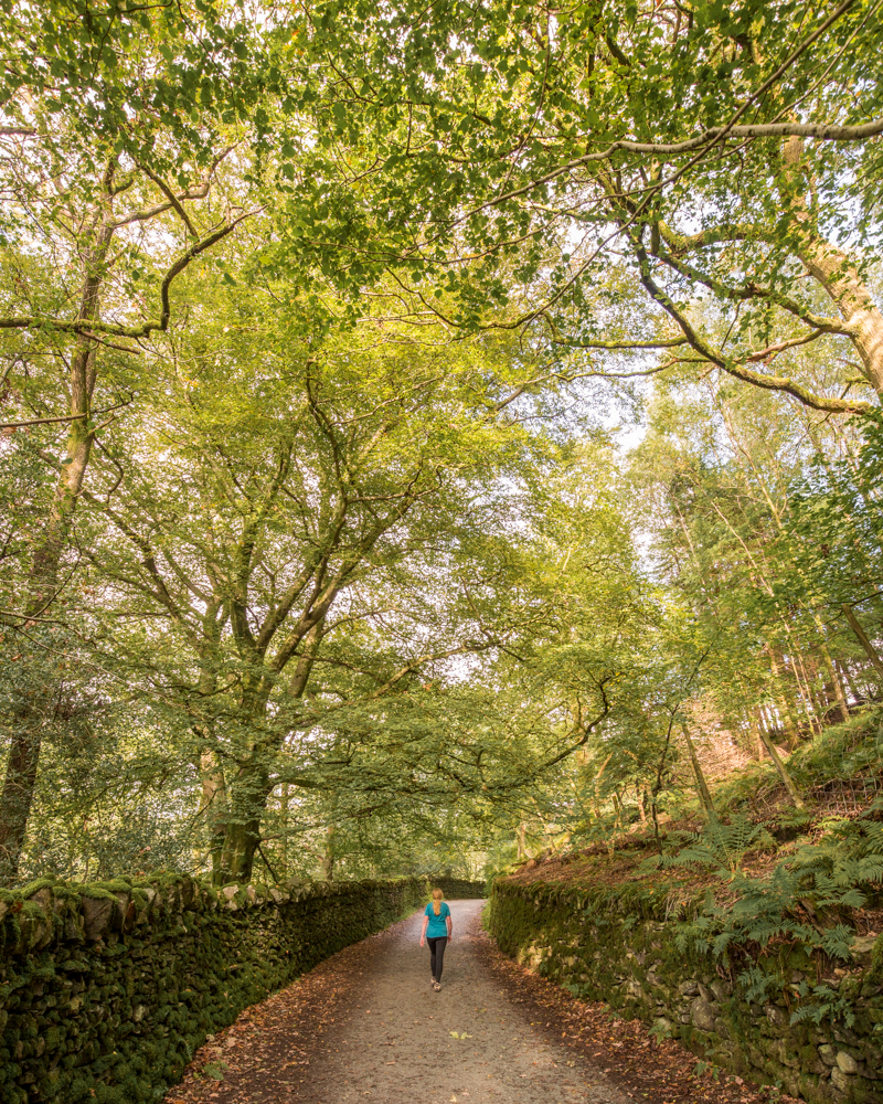 Rydal to Ambleside Walk