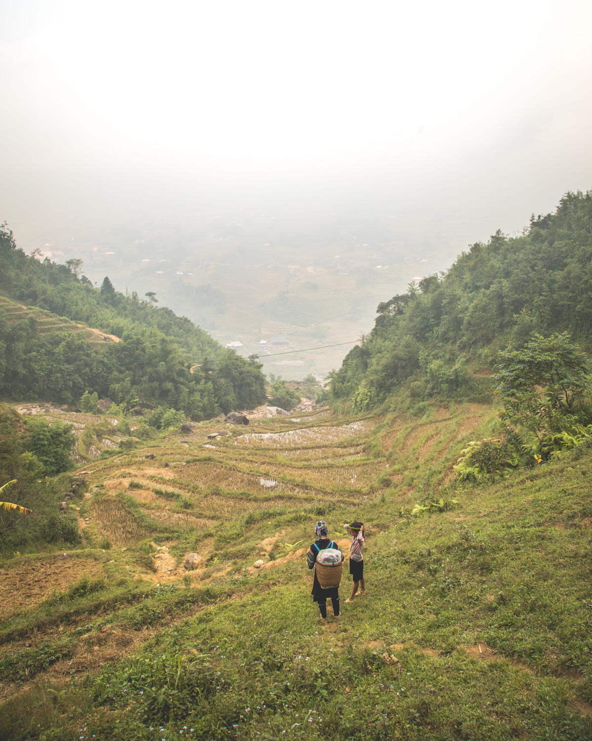 The views of the rice terraces on a walk round Ta Van