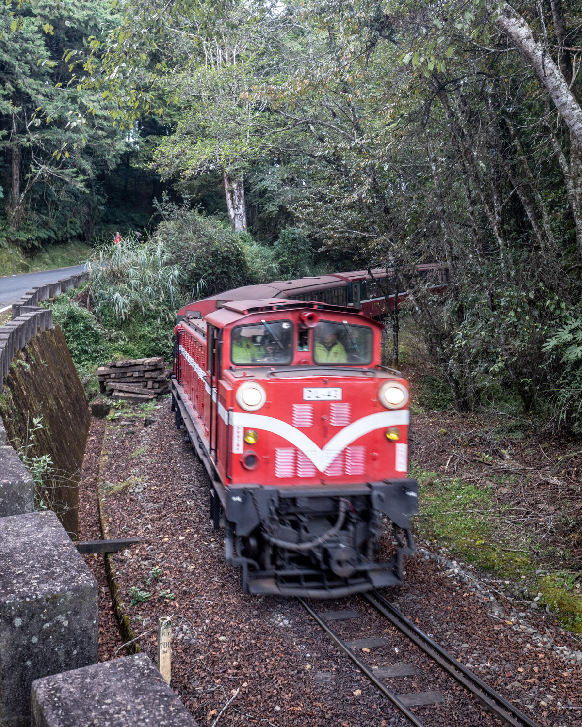 The trains from Zhaoping to Alishan