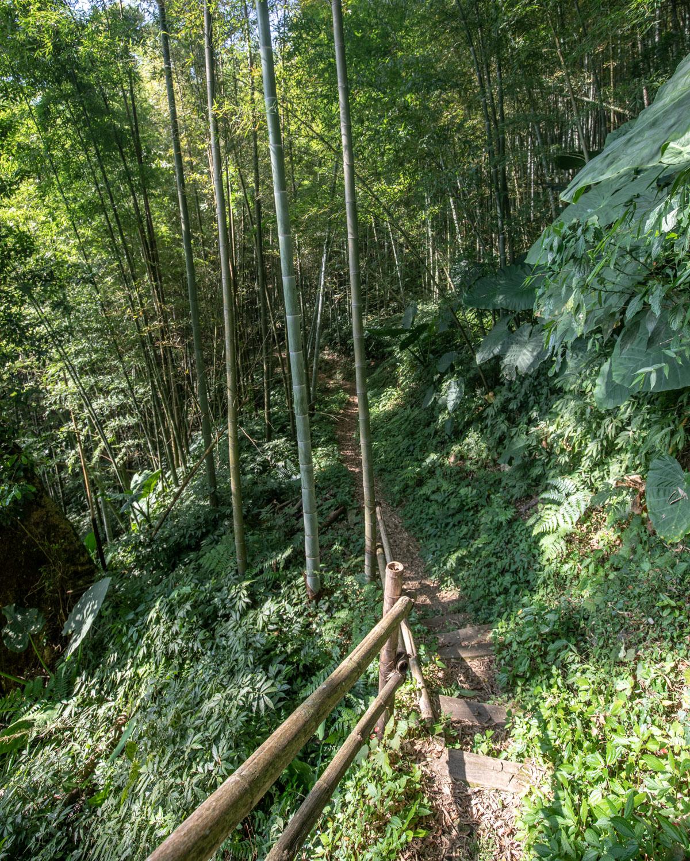 The track to Ruelli