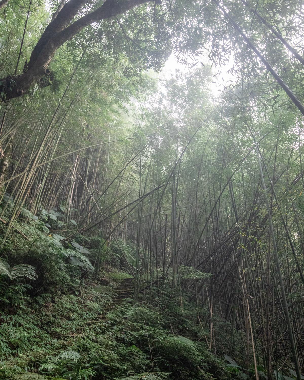The path on the Fenrui Track