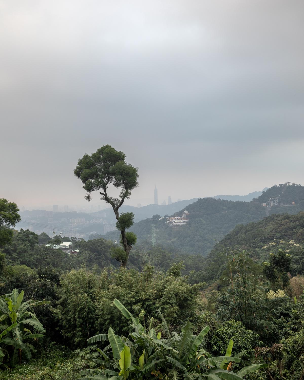 Things to do in Taipei - Maekong Tea