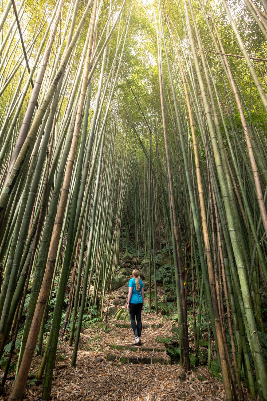 7 Day Taiwan Itinerary - Fenrui Trail