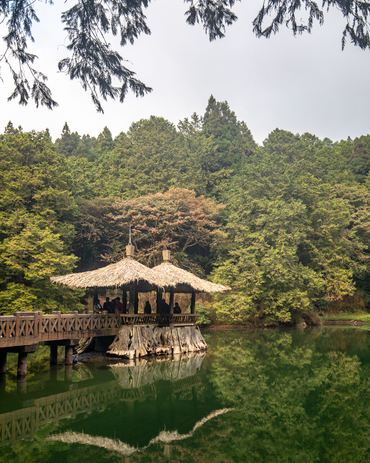 Taiwan 7 day itinerary - Sister Ponds in Alishan