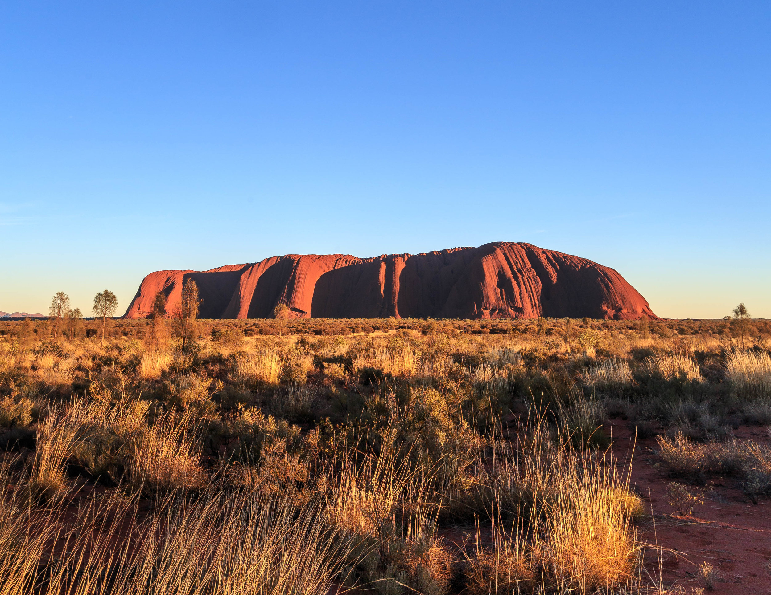 The view of Uluru from the Sunrise viewing platform