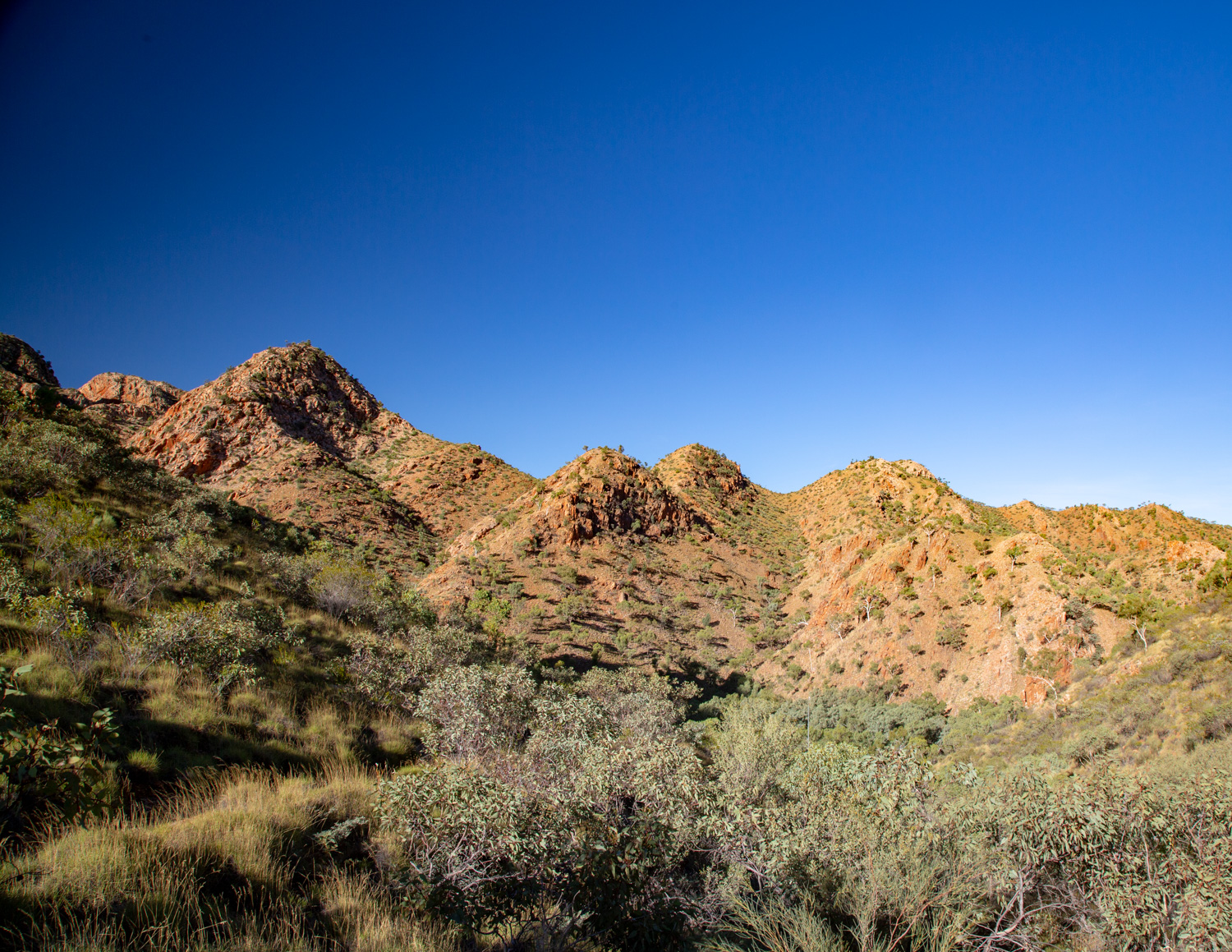 The walk by Standley Chasm in the West McDonnell Ranges