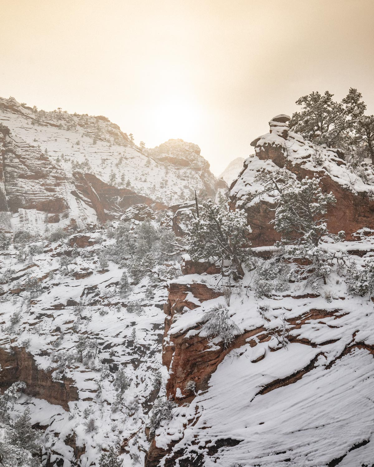 The Canyon Overlook Trail in winter