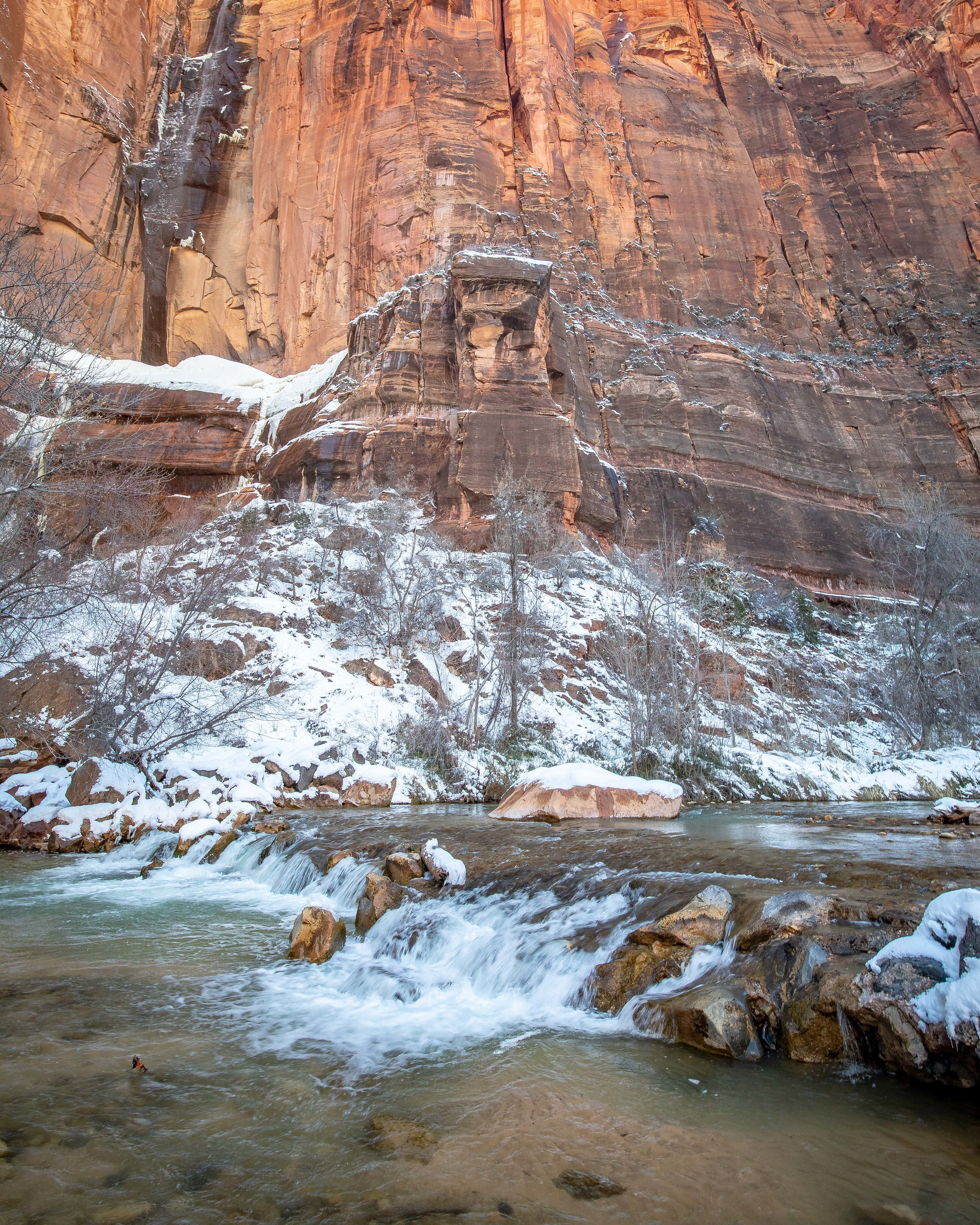 The Riverside Walk - Zion National Park hikes