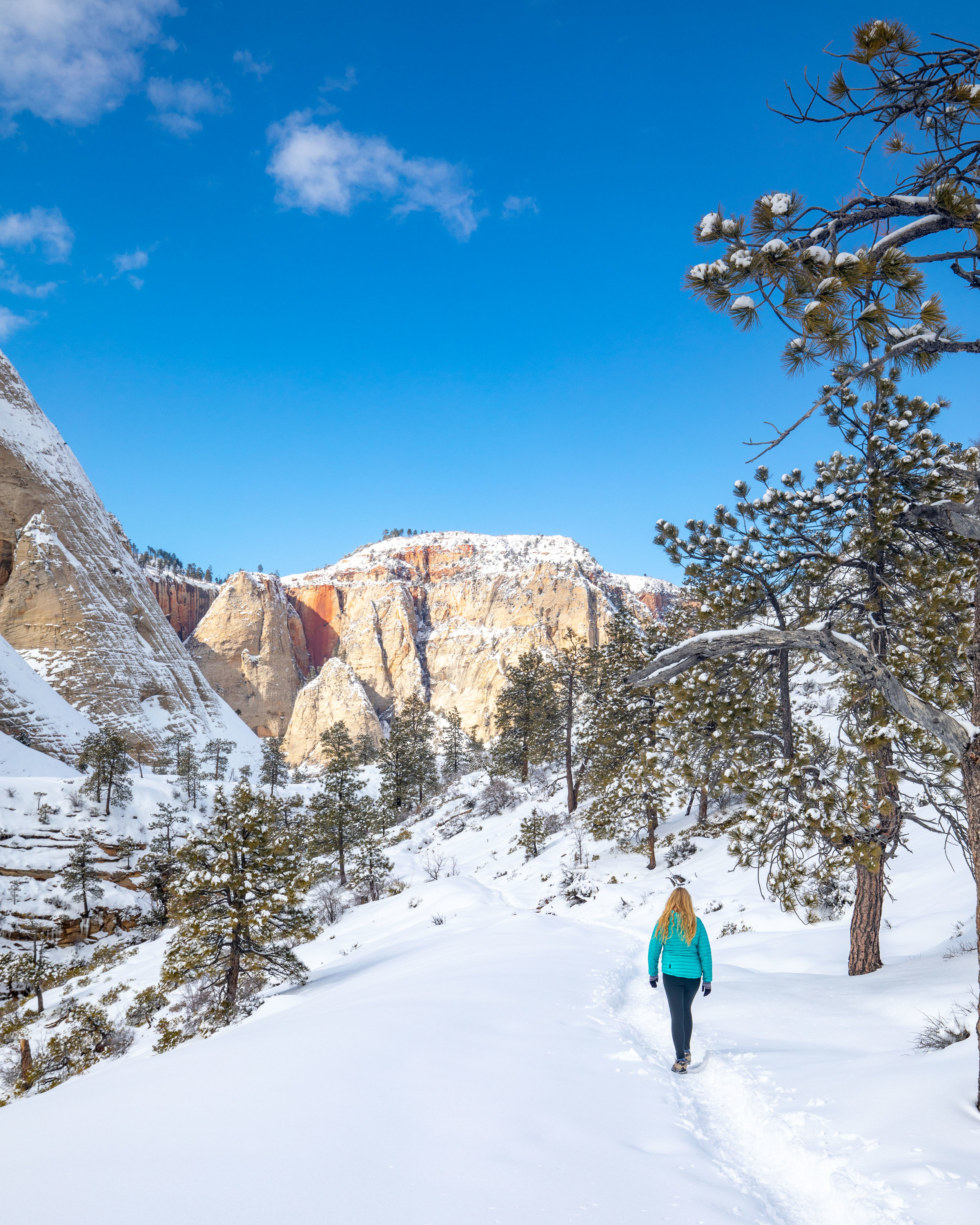 West Rim Trail in the snow