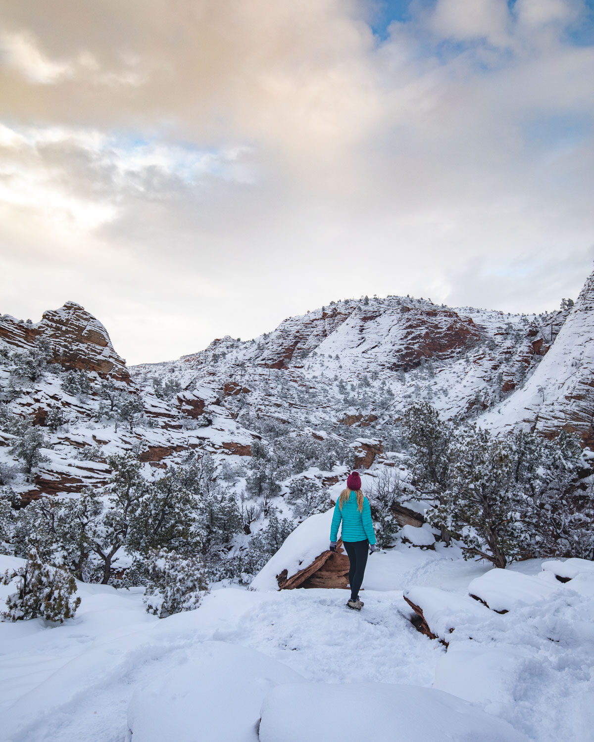 Canyon Overlook Trail in Winter
