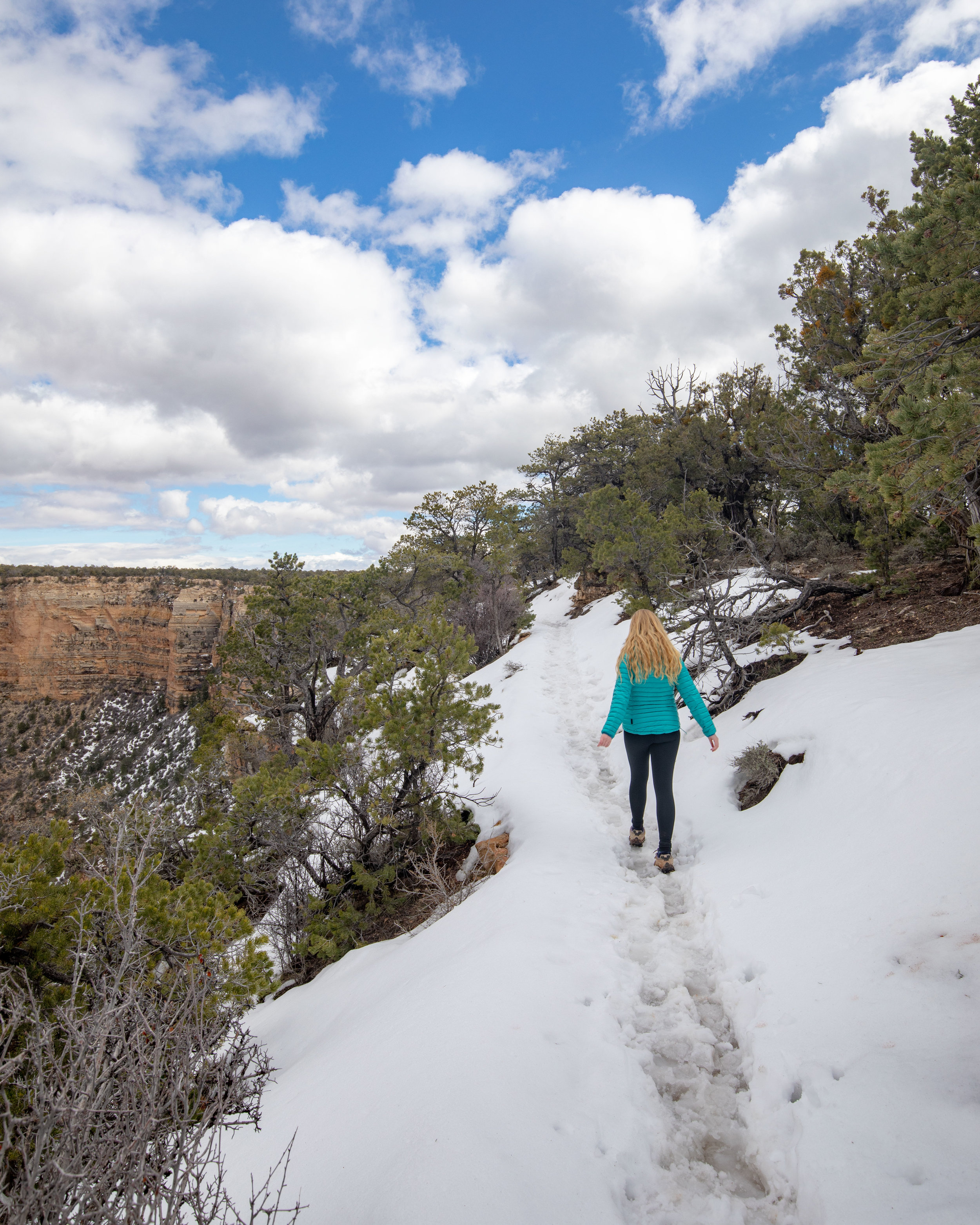 Snow and ice on the Rim Trail