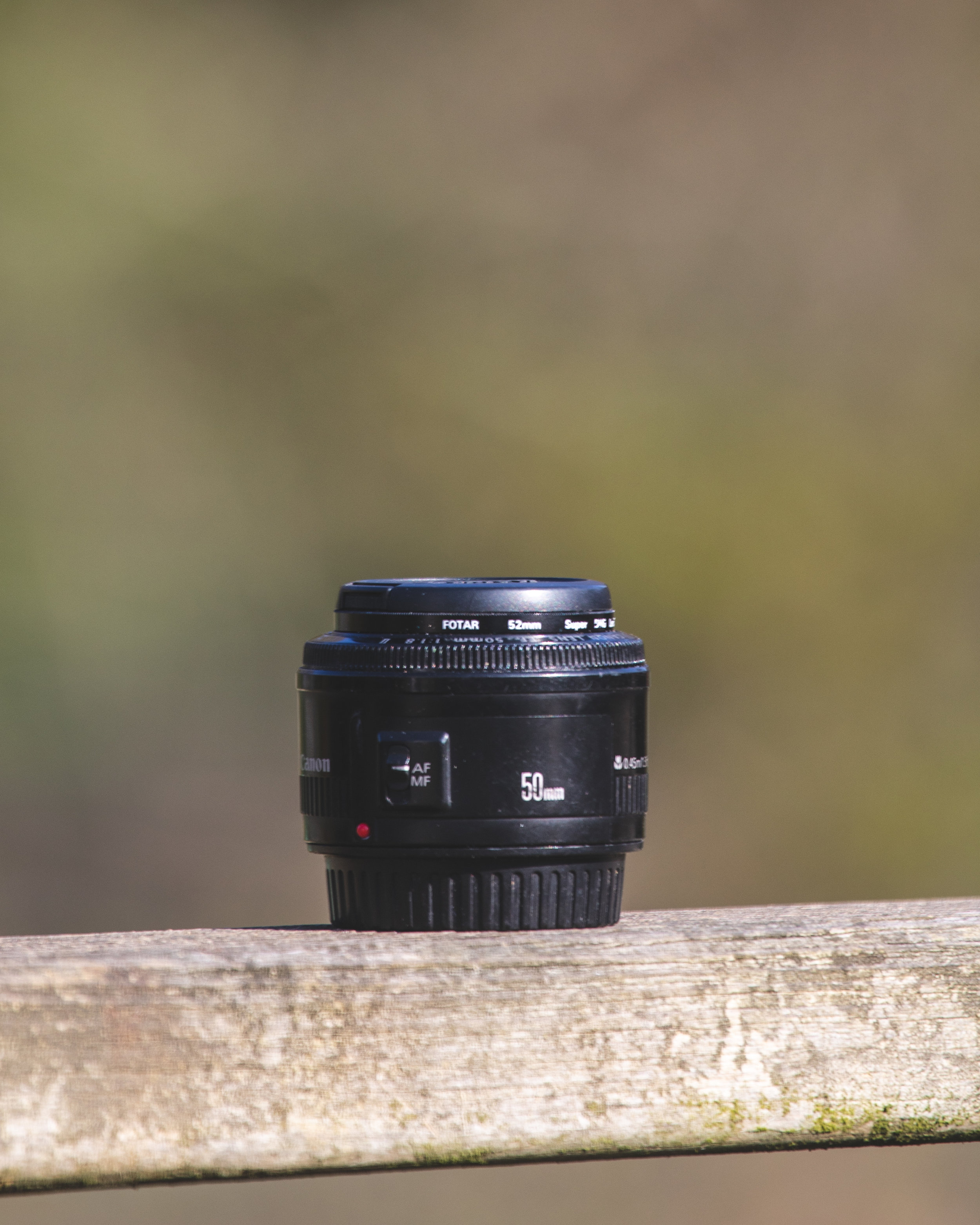 The nifty fifty - our favourite budget lens