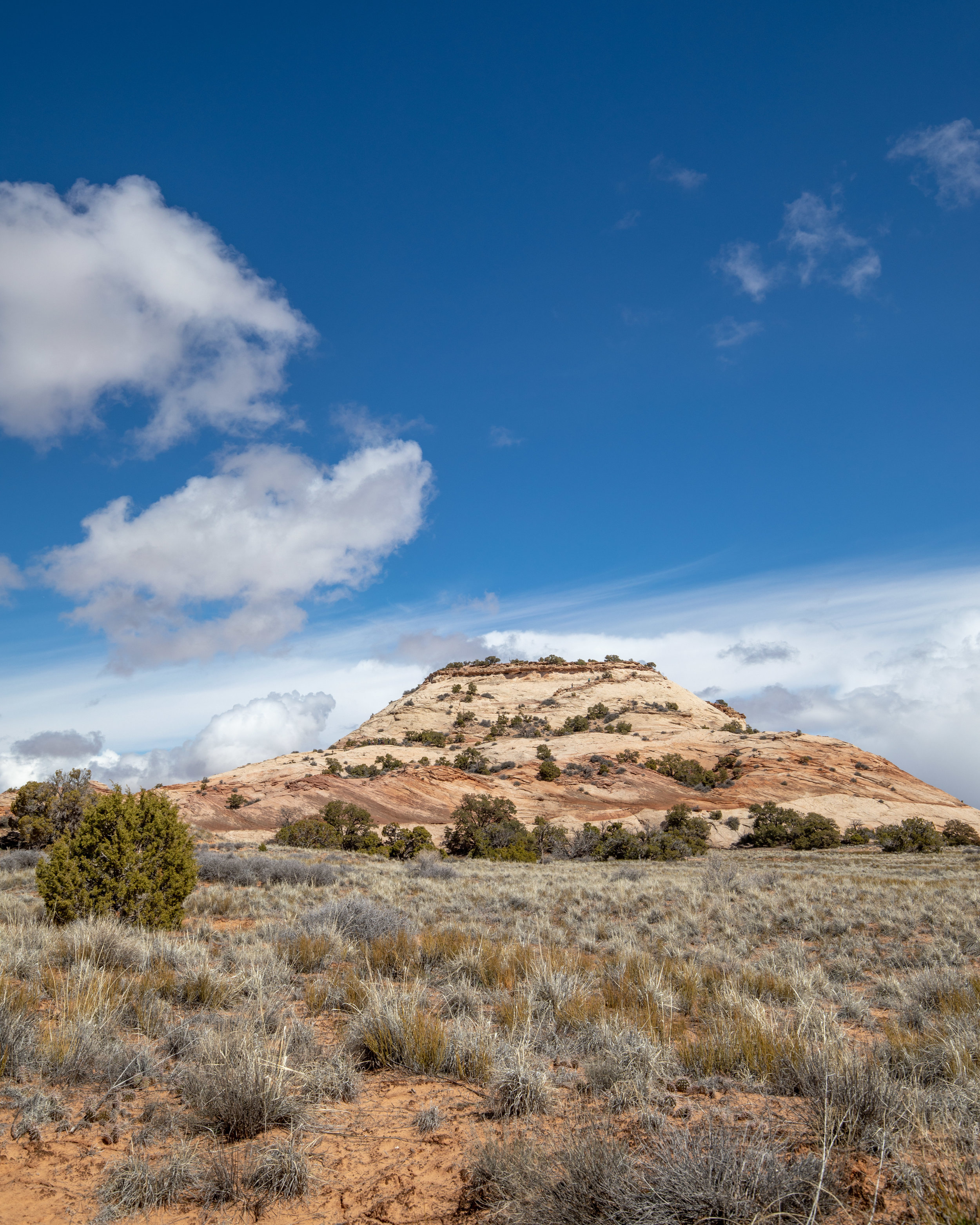 Aztec Butte - Canyonlands National Park hikes