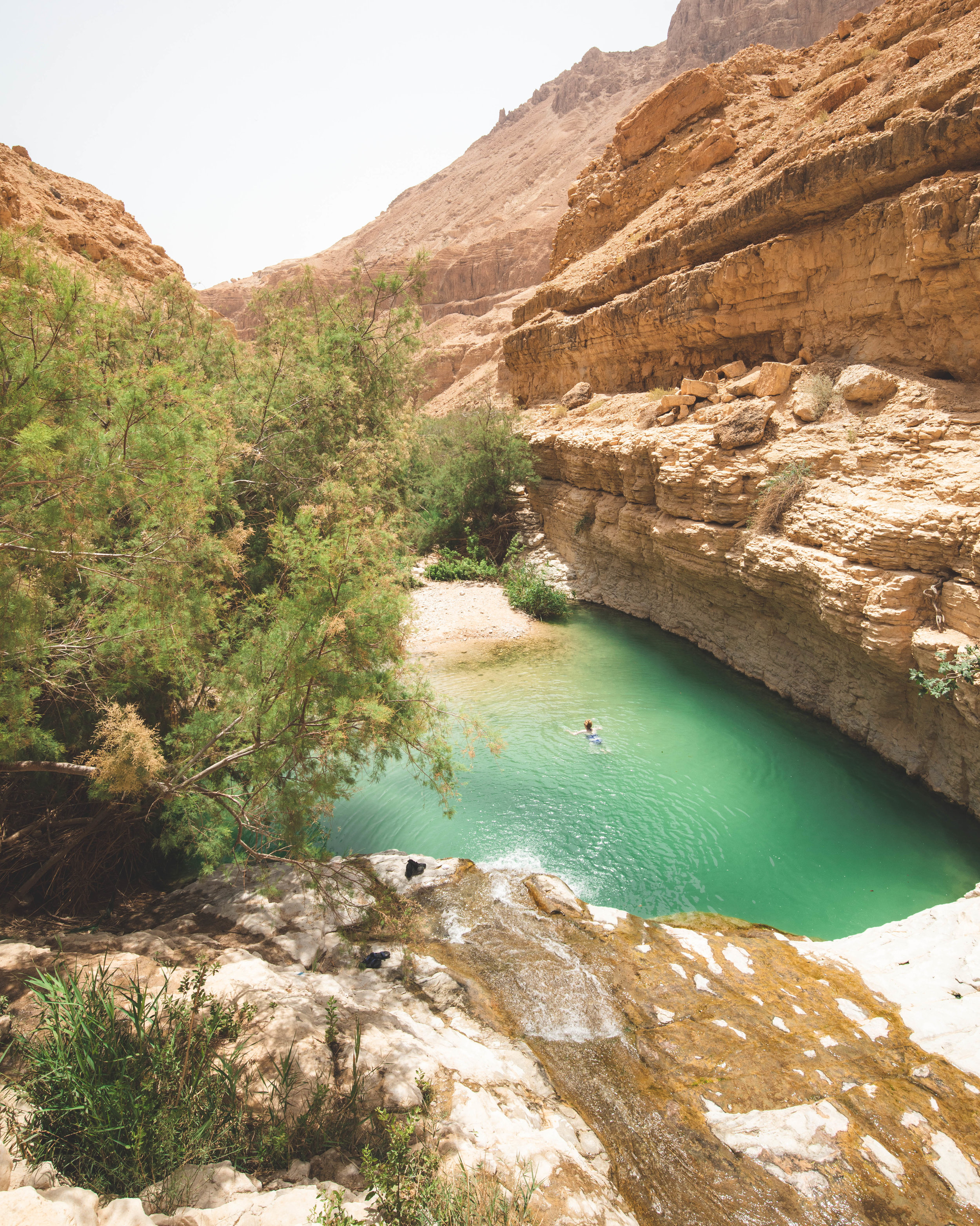 Wadi Arugot - best things to do in Ein Gedi