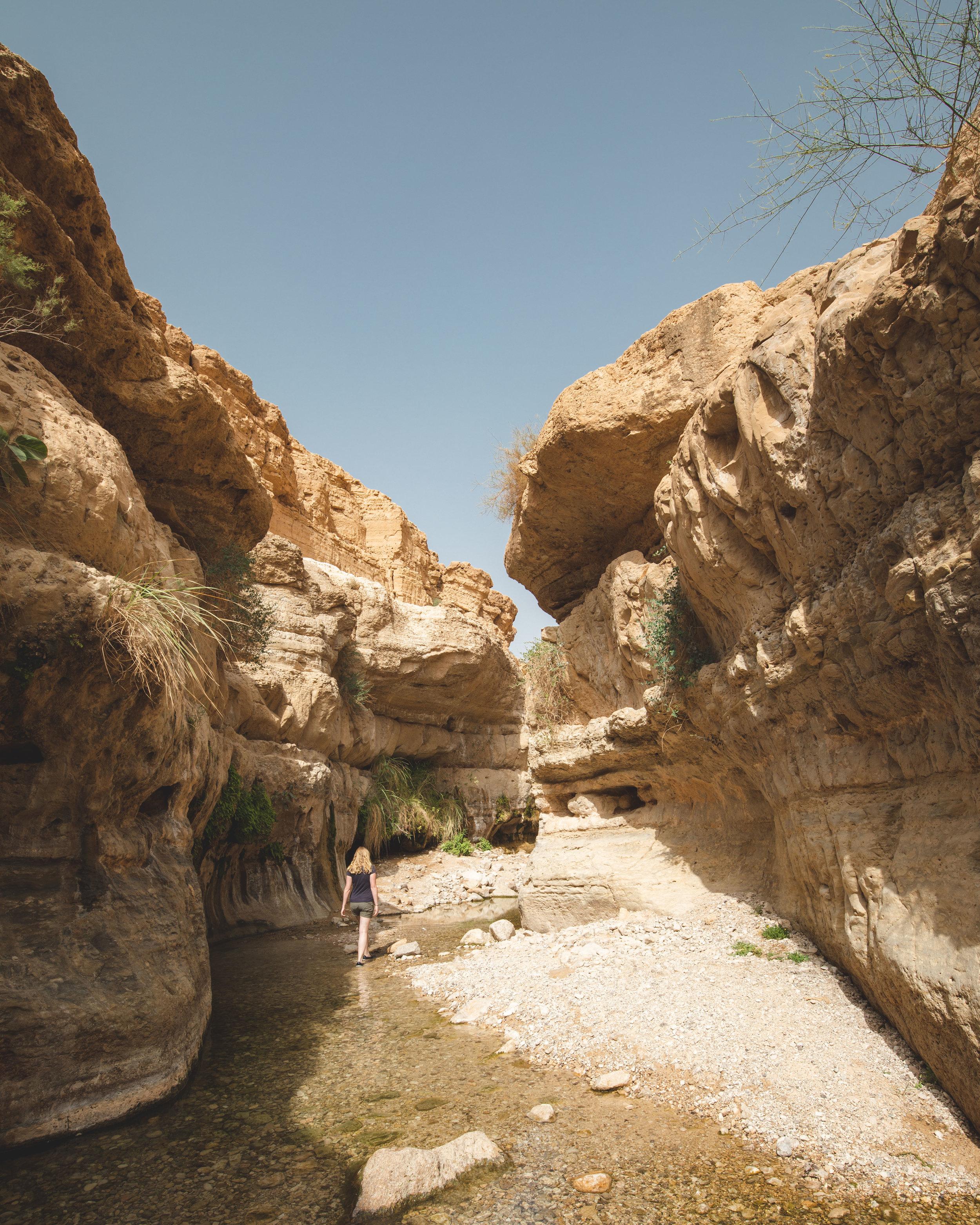 Wadi Arugot in Ein Gedi