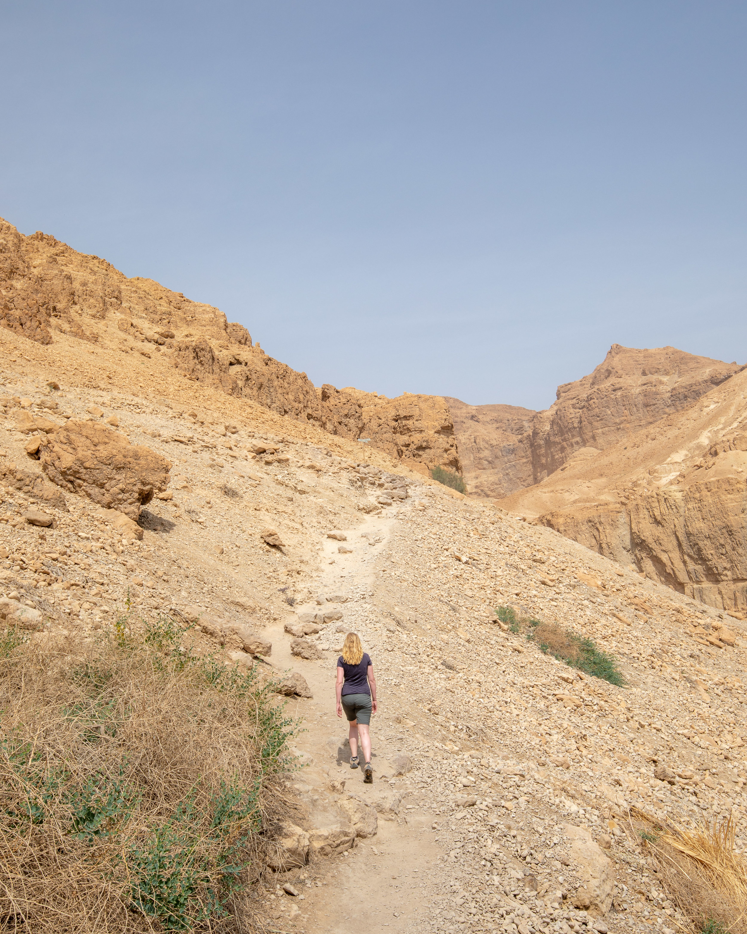 The hike up to Ein Gedi Spring