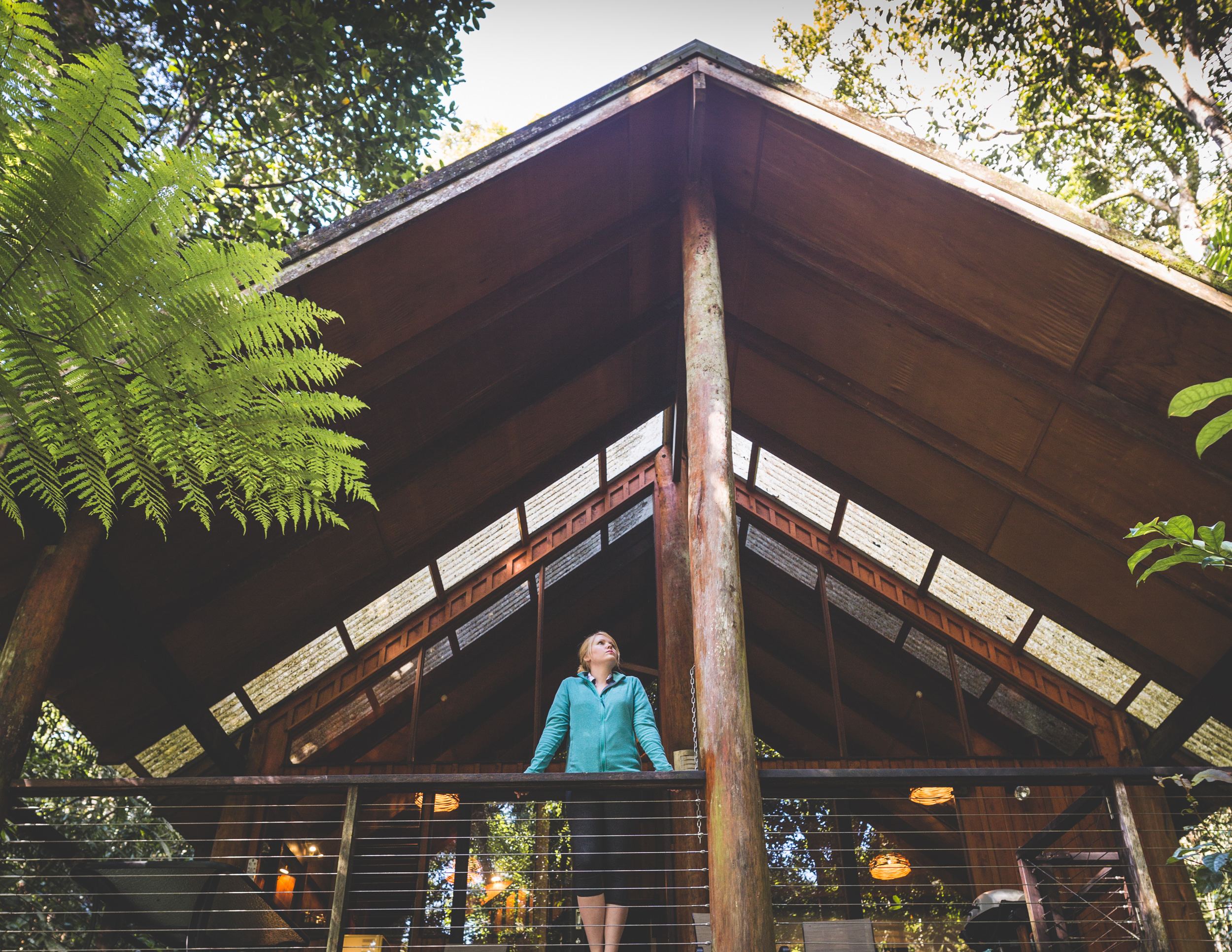 Where to stay in Cairns - Canopy Treehouse