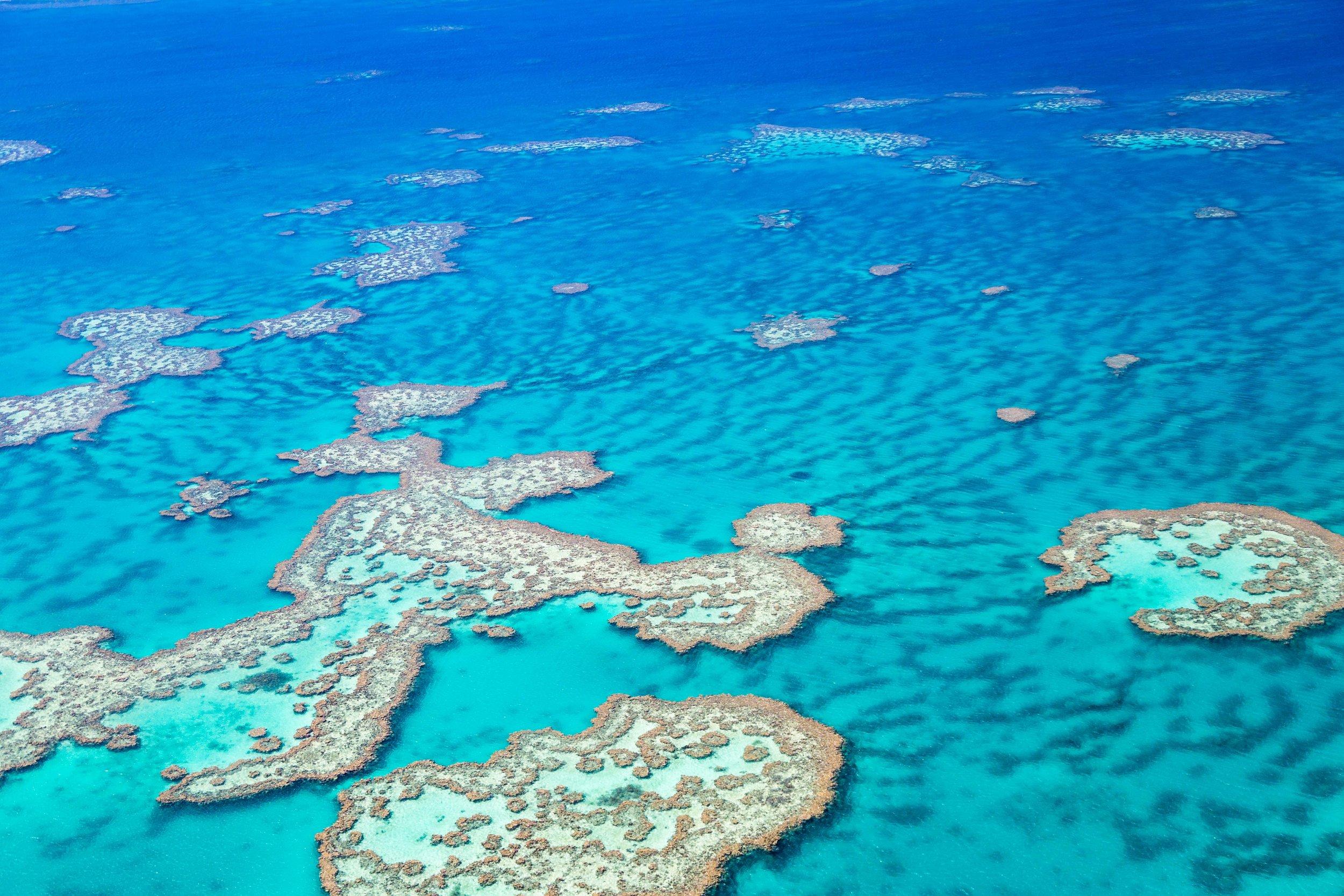 Great Barrier Reef near Port Douglas - Where to stay in Port Douglas