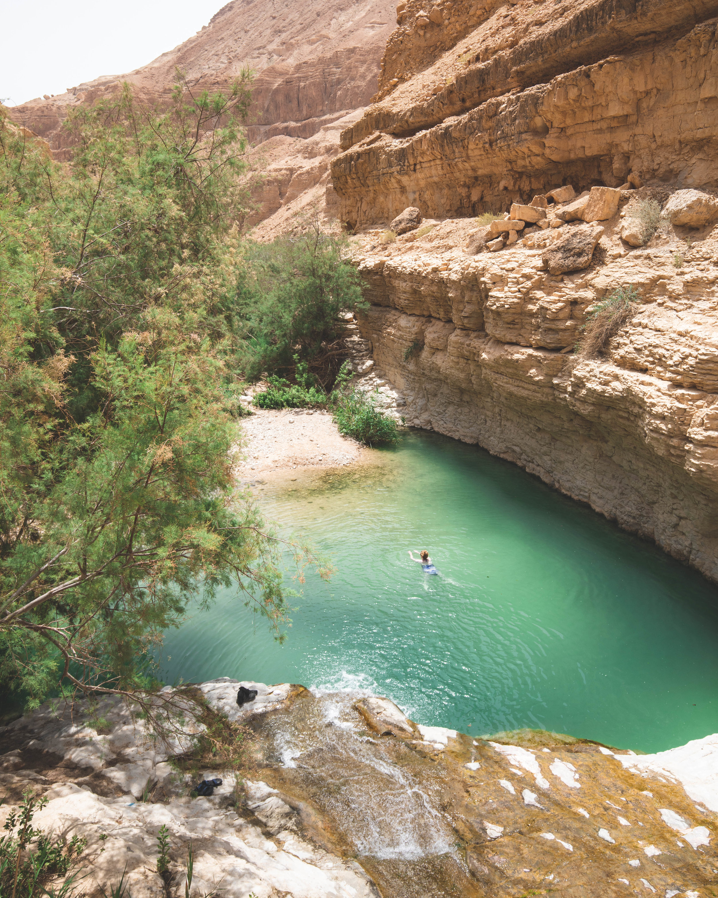 the upper pools in Ein Gedi
