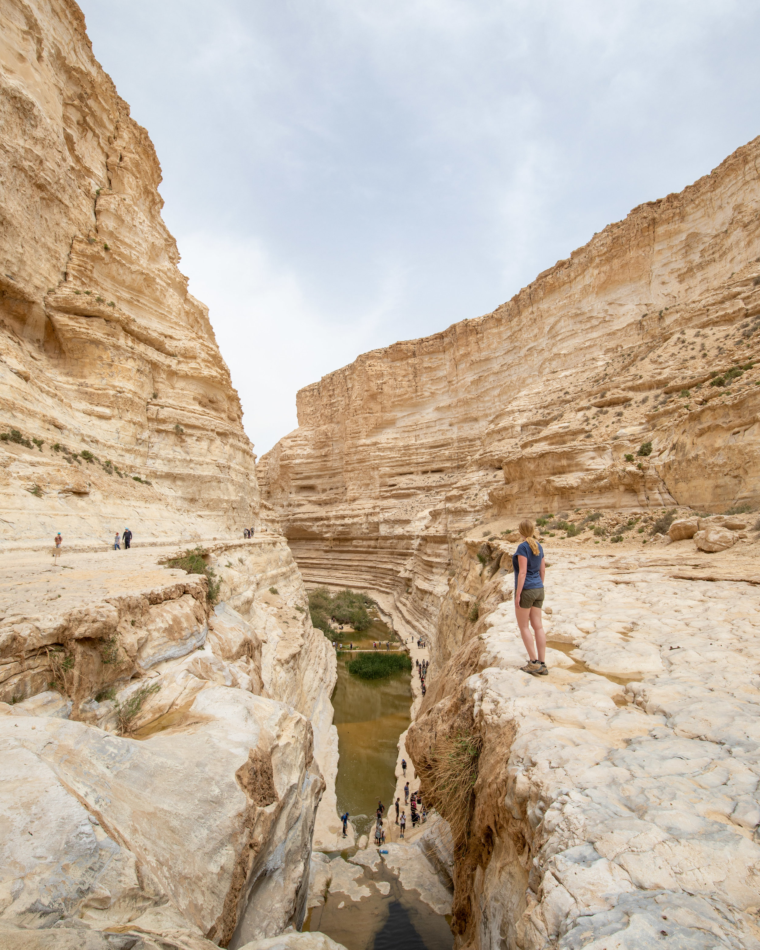 The canyon at Ein Avdat National Park