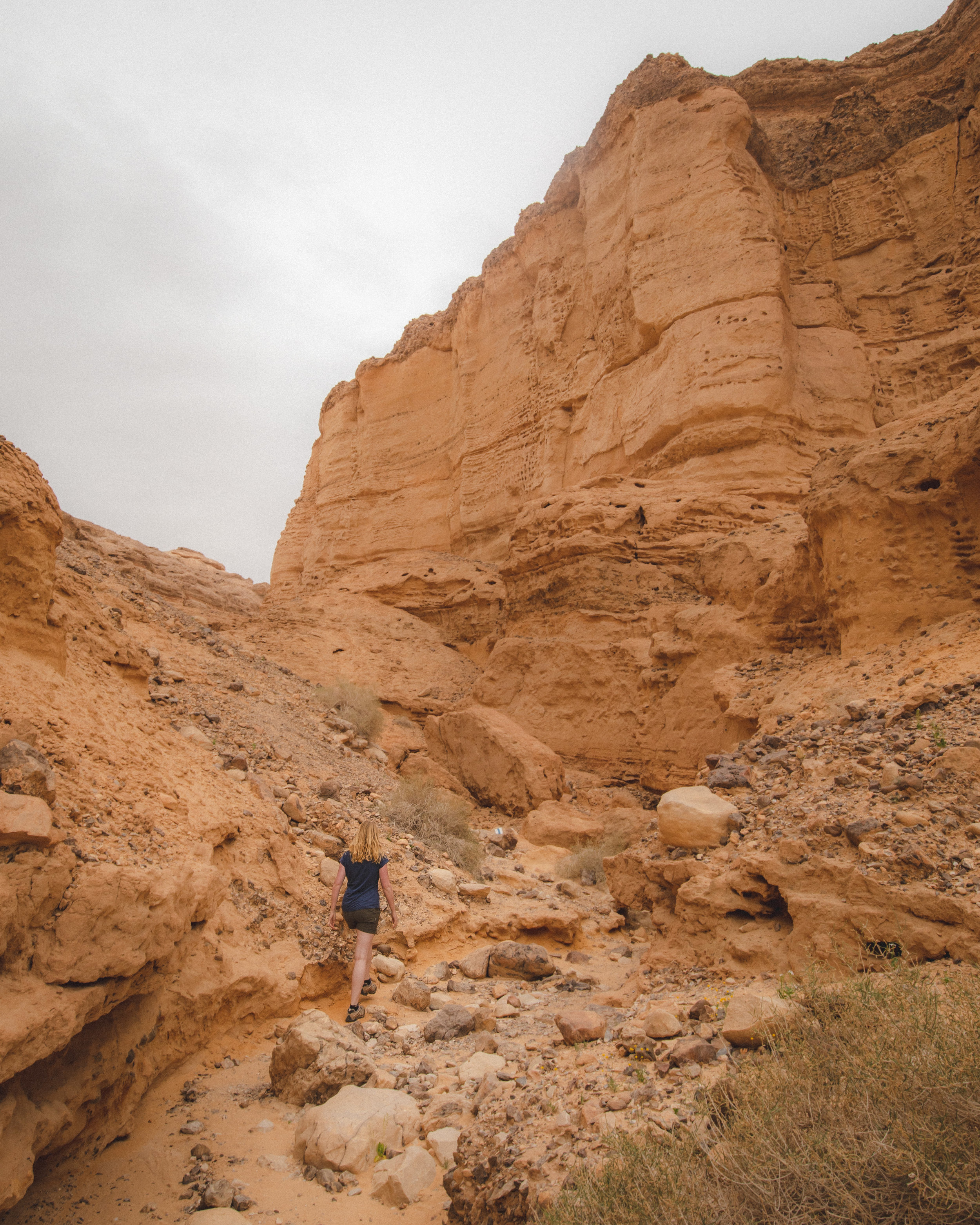 Things to do in Negev Desert - Ada Canyon