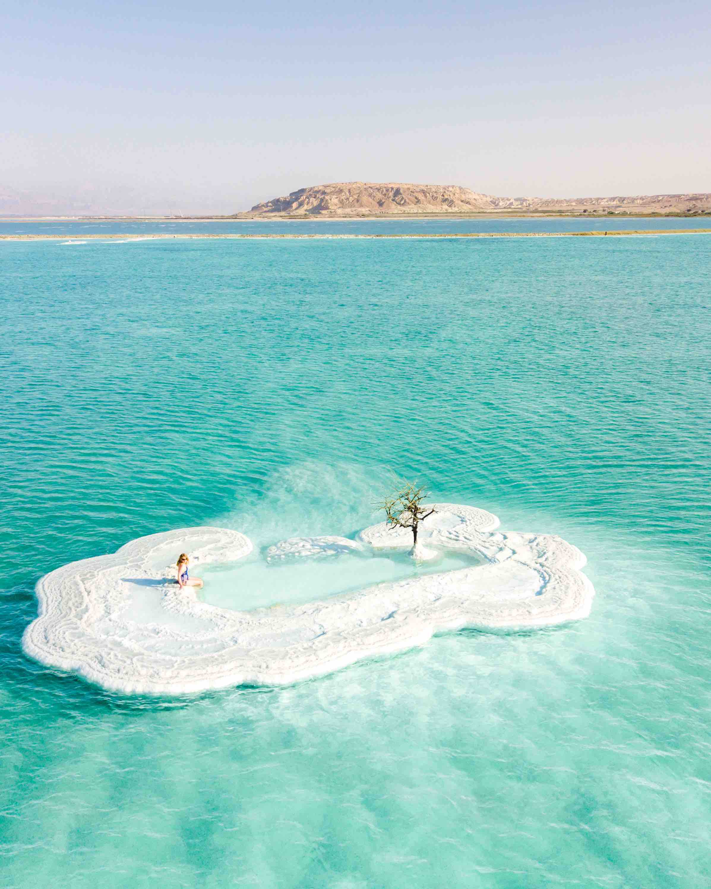 Things to do in the Dead Sea - The Dead Sea Tree