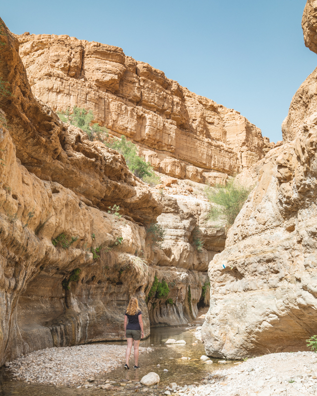 Hiking at Wadi Arugot