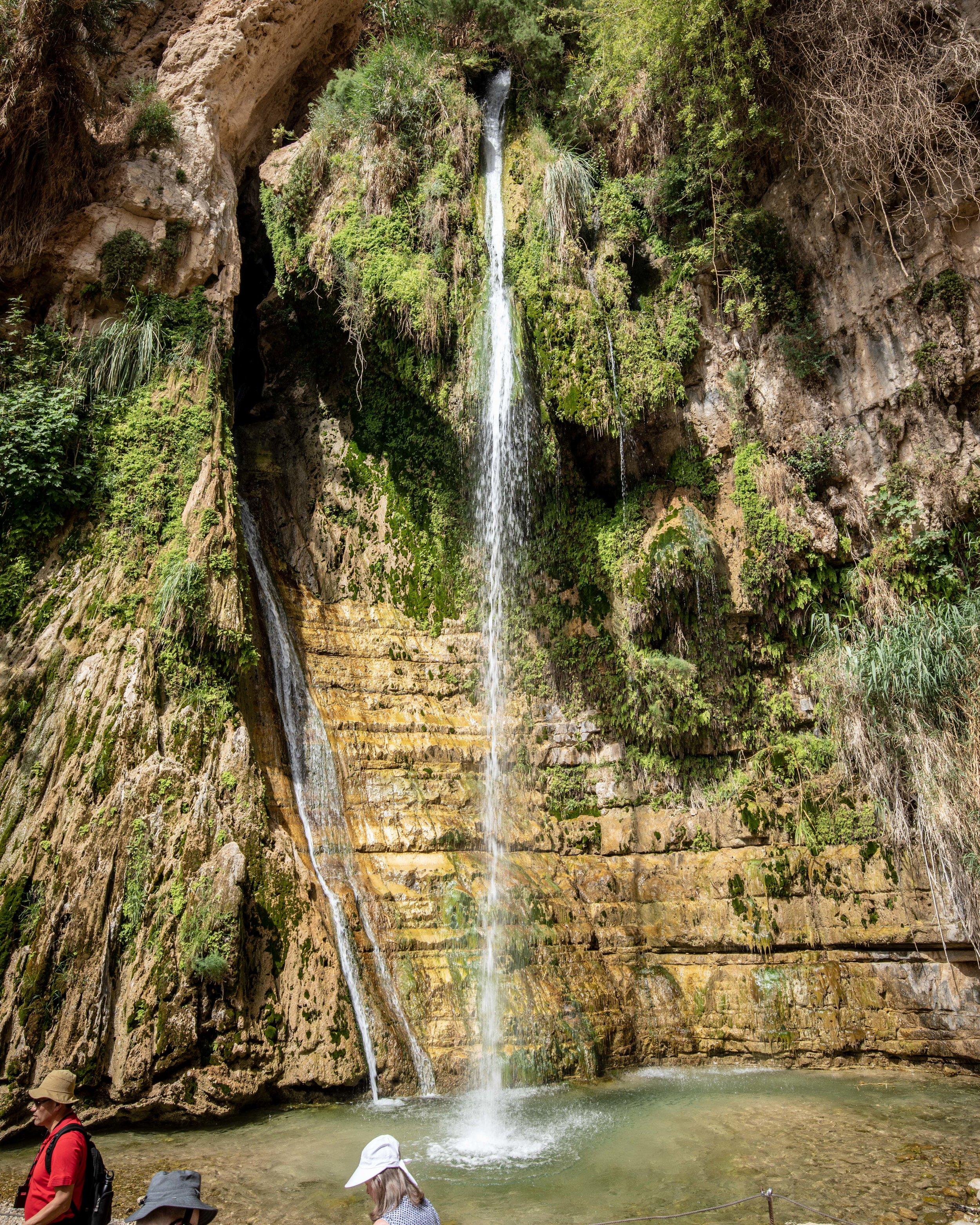 The Wadi David waterfall