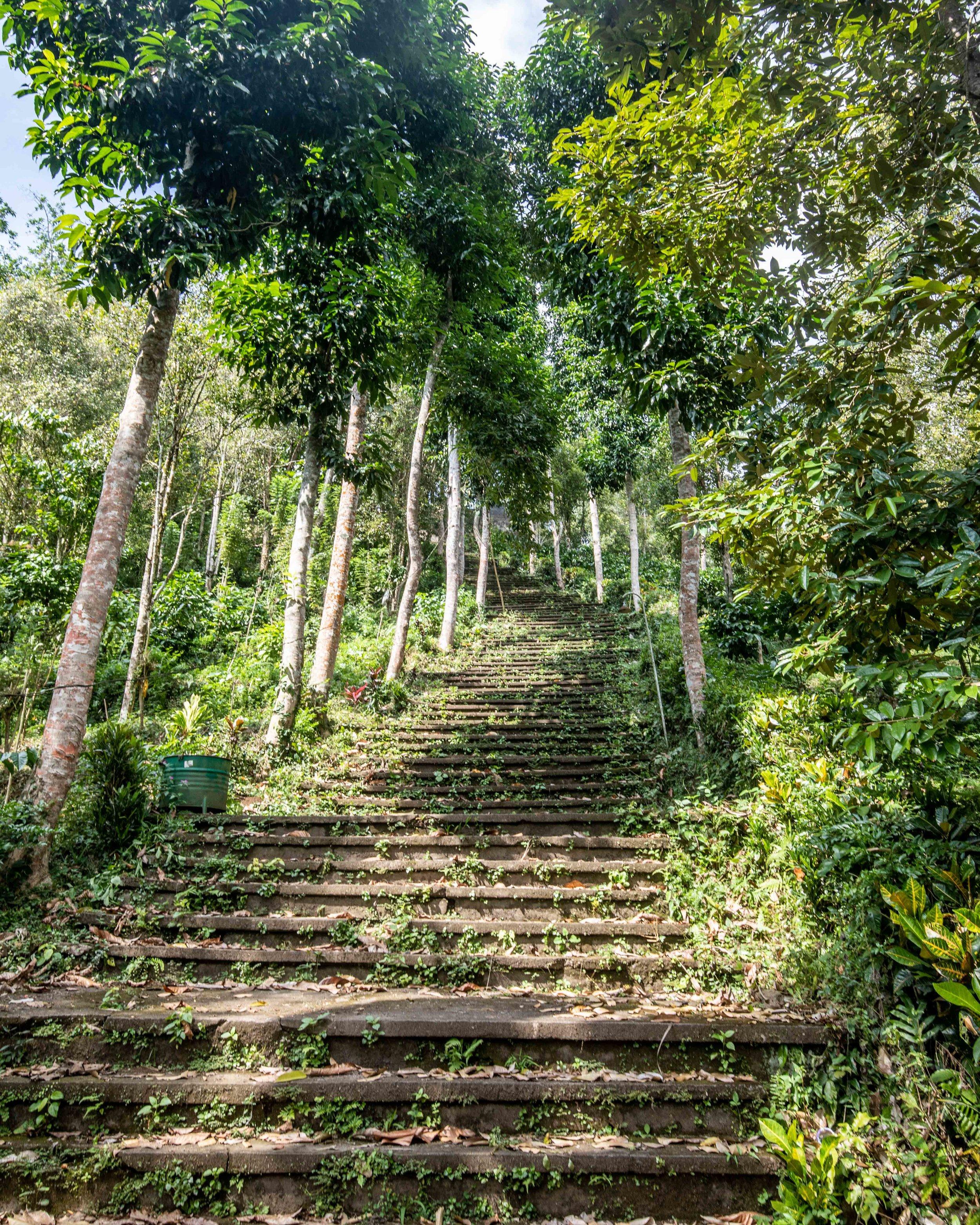 Bukit Temple - Things to do in Sidemen Bali
