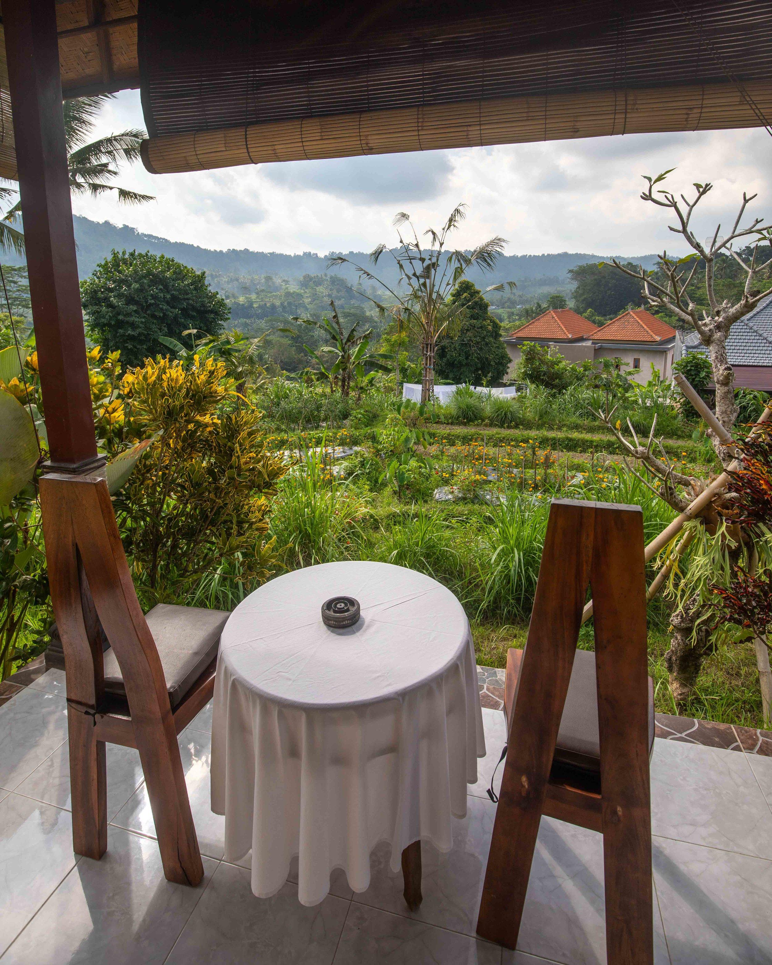 The view from Maha Neka Homestay, Sidemen Bali