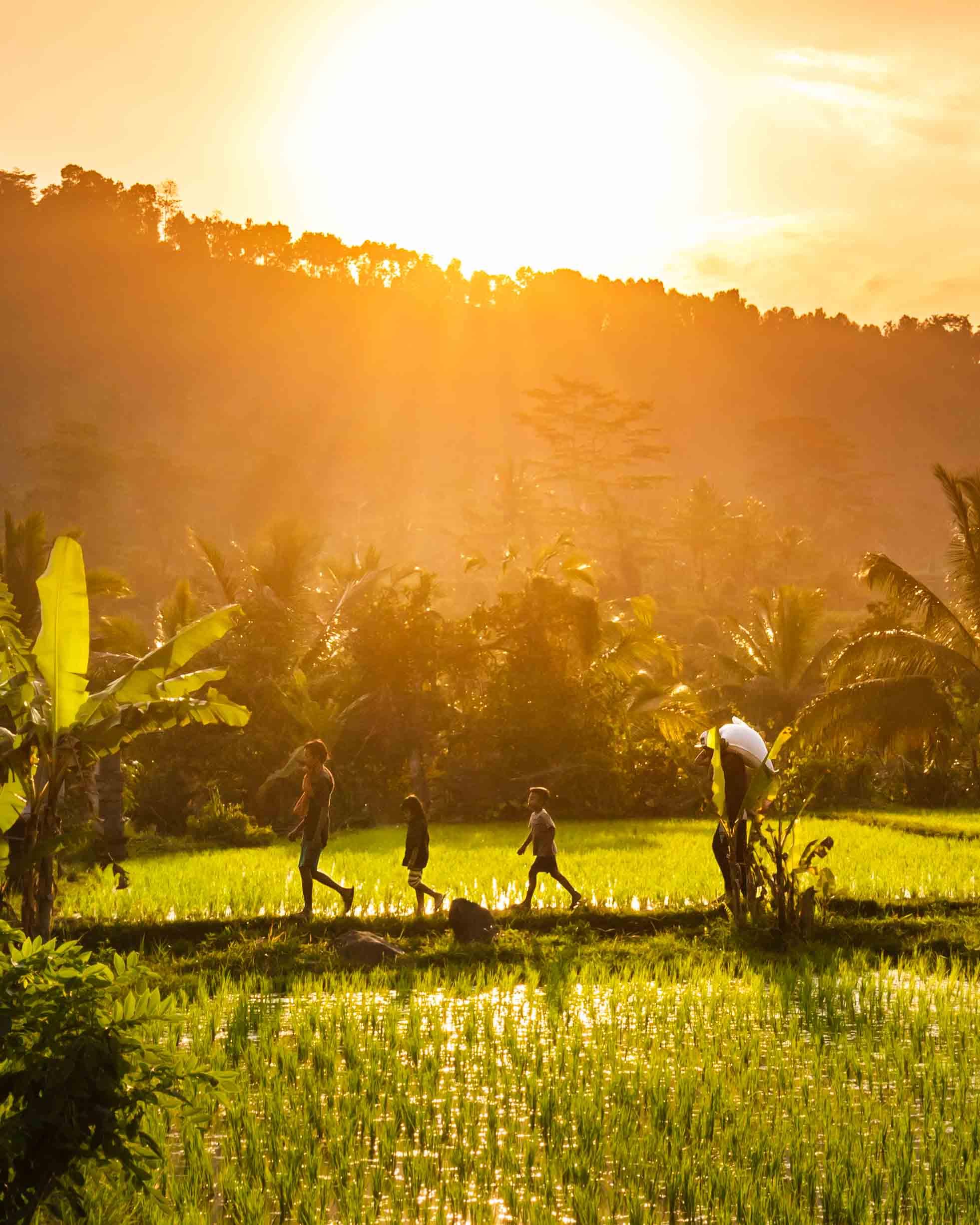 Sidemen Bali - epic things to do