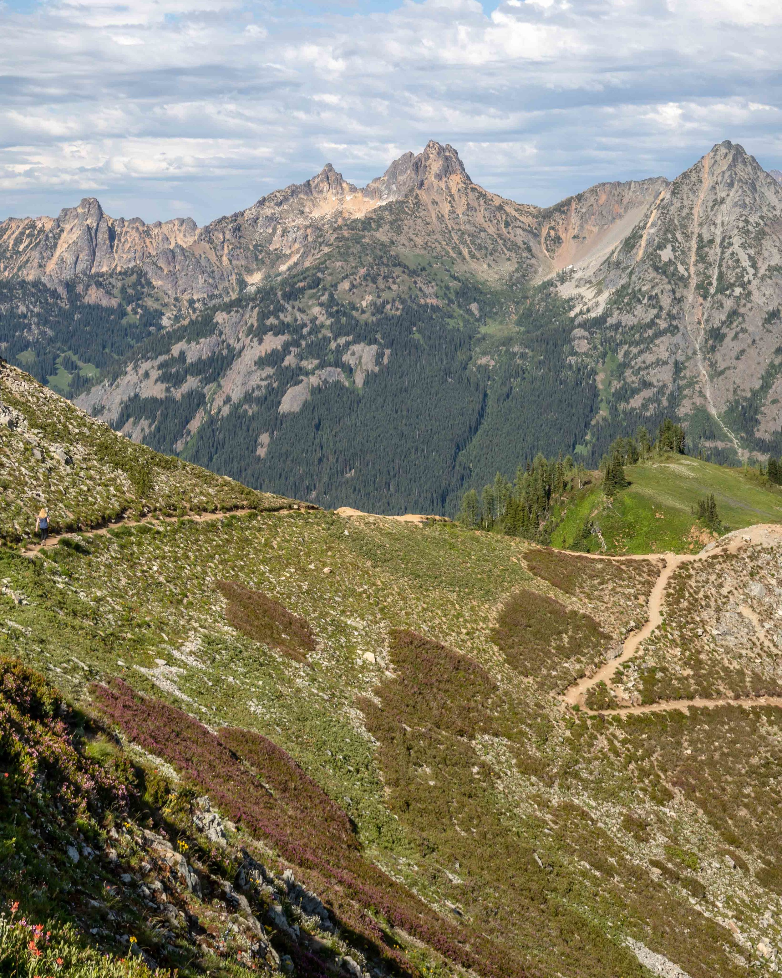 The switchbacks on the Maple Pass Loop