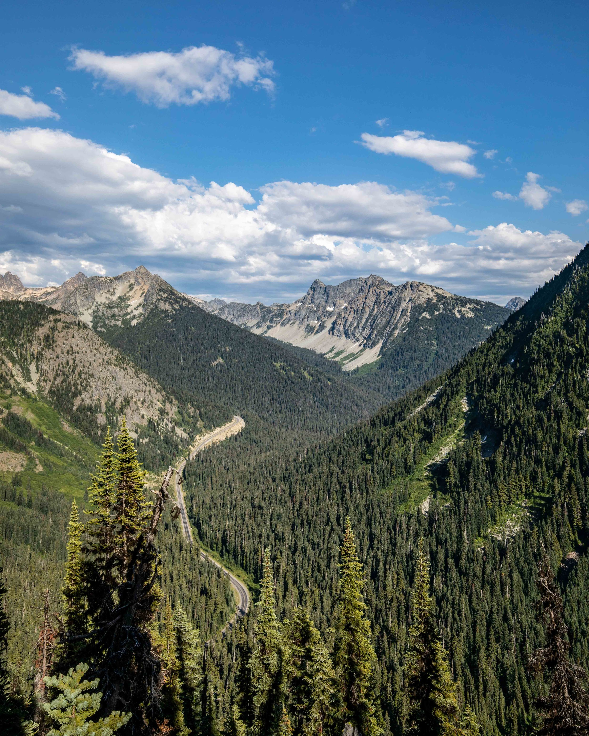 The road at North Cascades National Park
