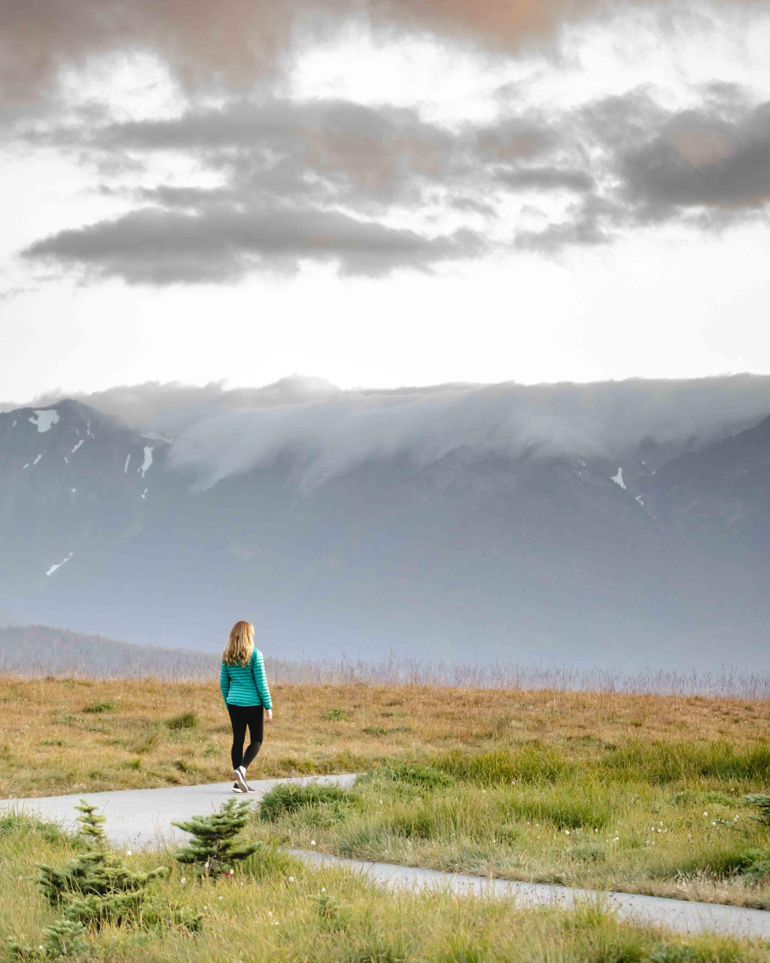 Hikes in Olympic National Park - Hurricane Ridge