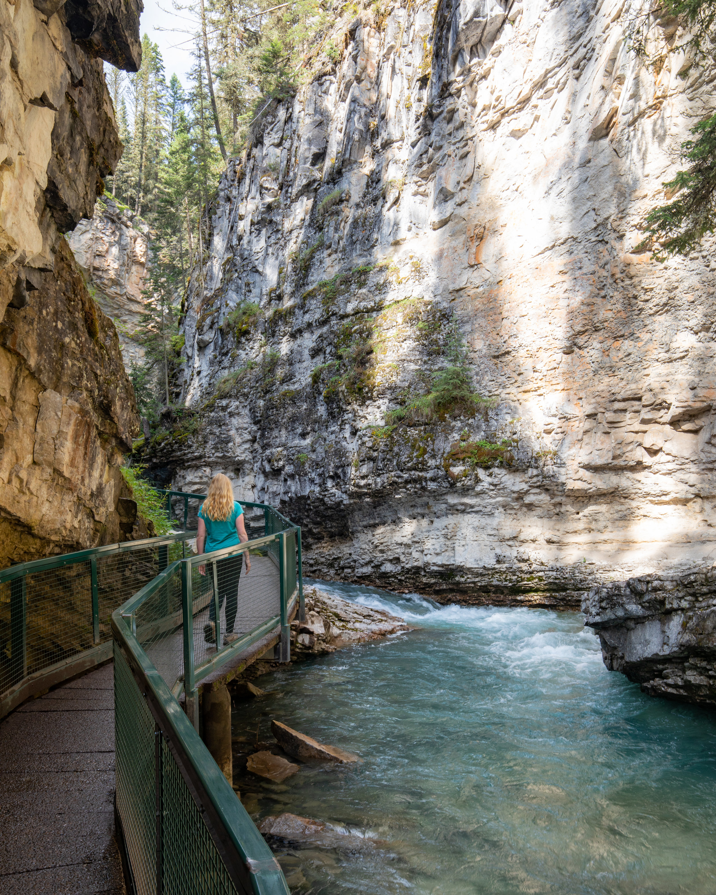 Johnston Canyon Lower Falls