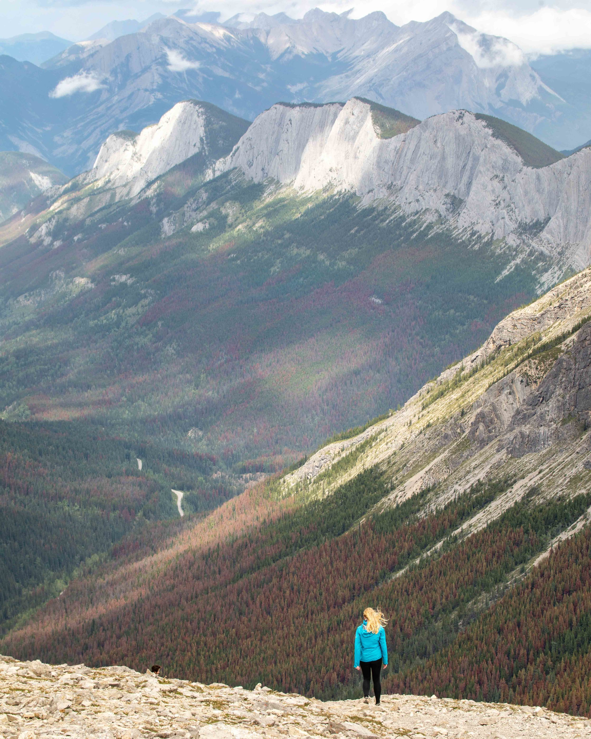 The descent from the summit of Sulphur Skyline