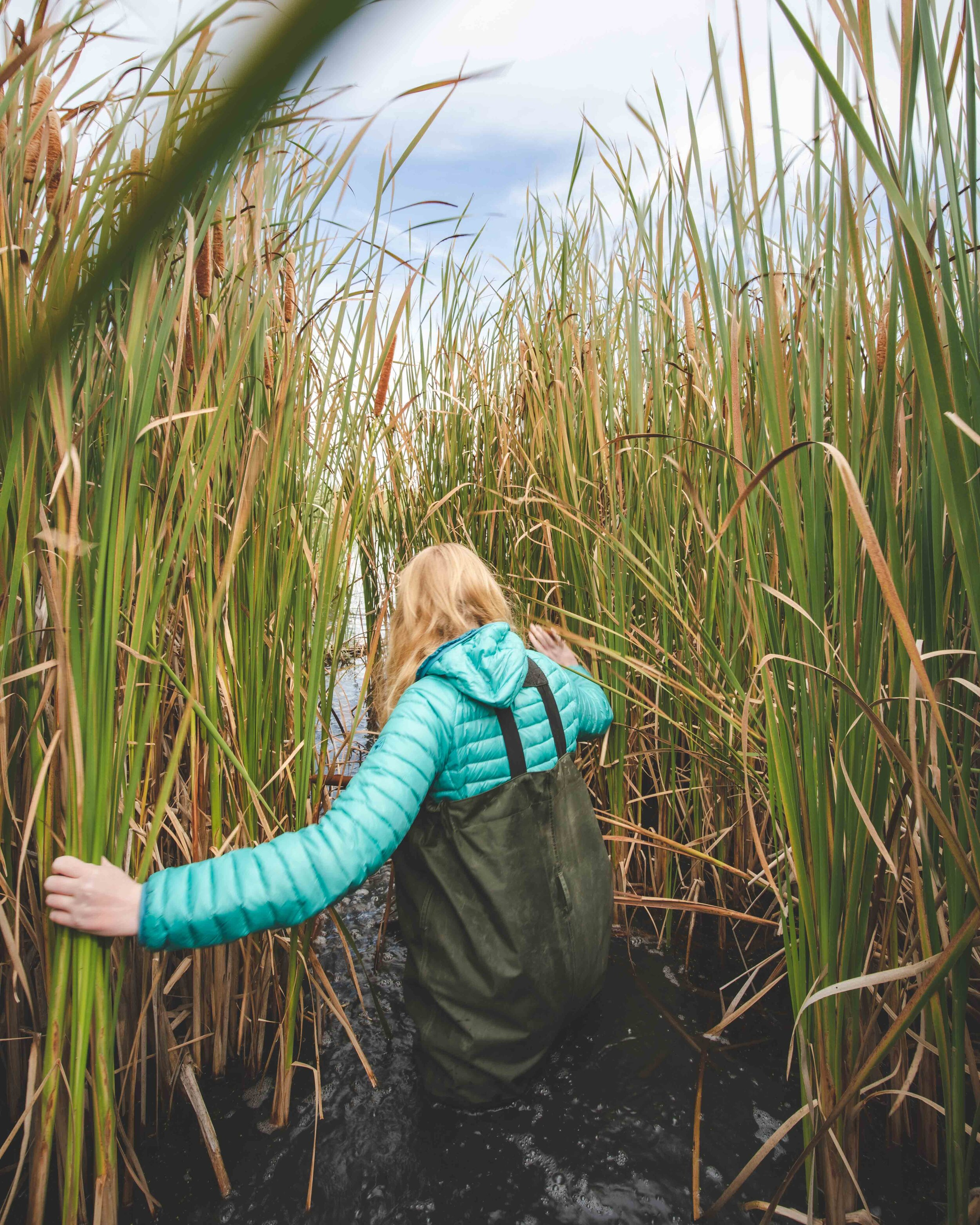 Wading in the marsh - Things to do in Winnipeg
