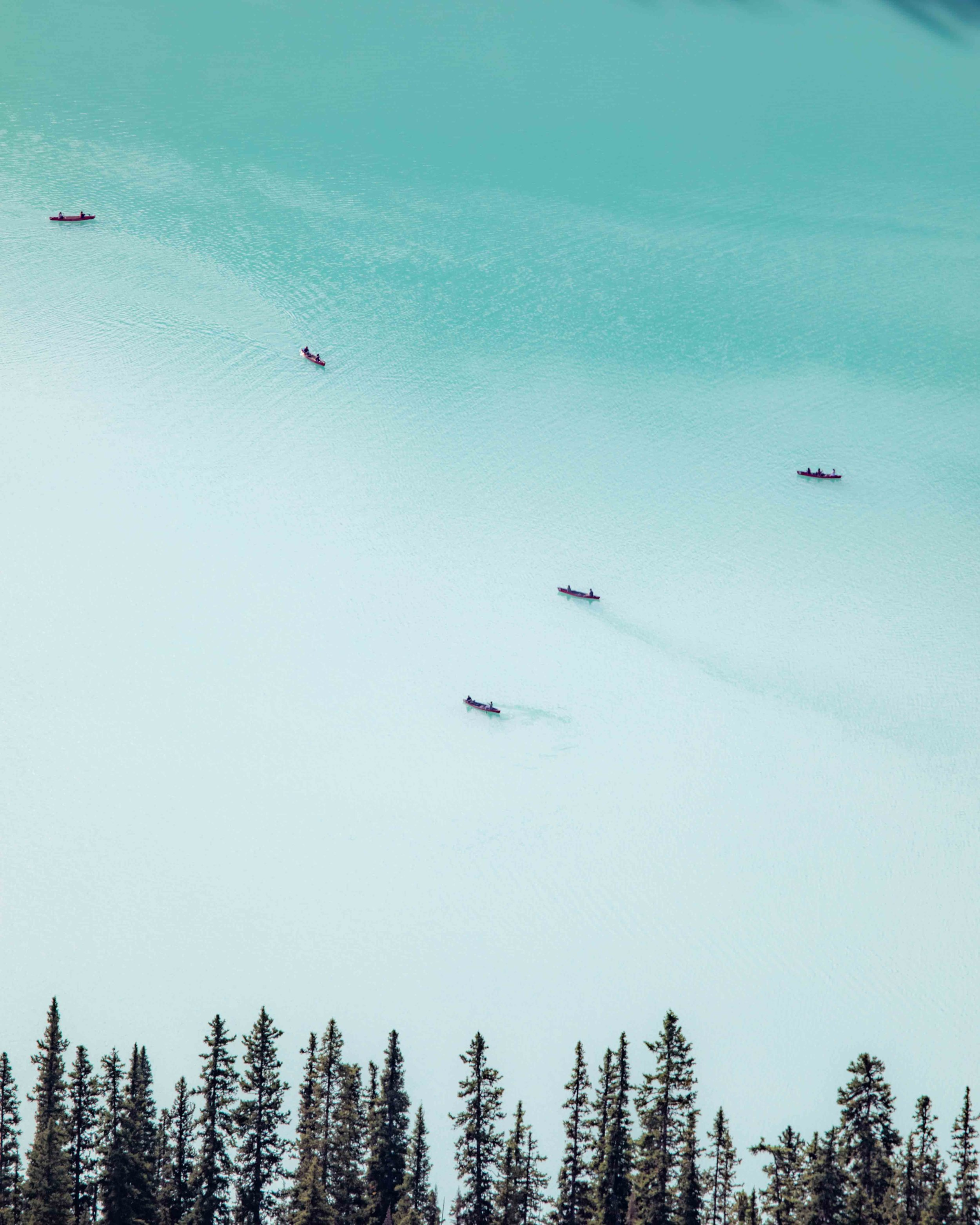 The canoes from Big Bee Hive on the Lake Agnes Trail in Lake Louise