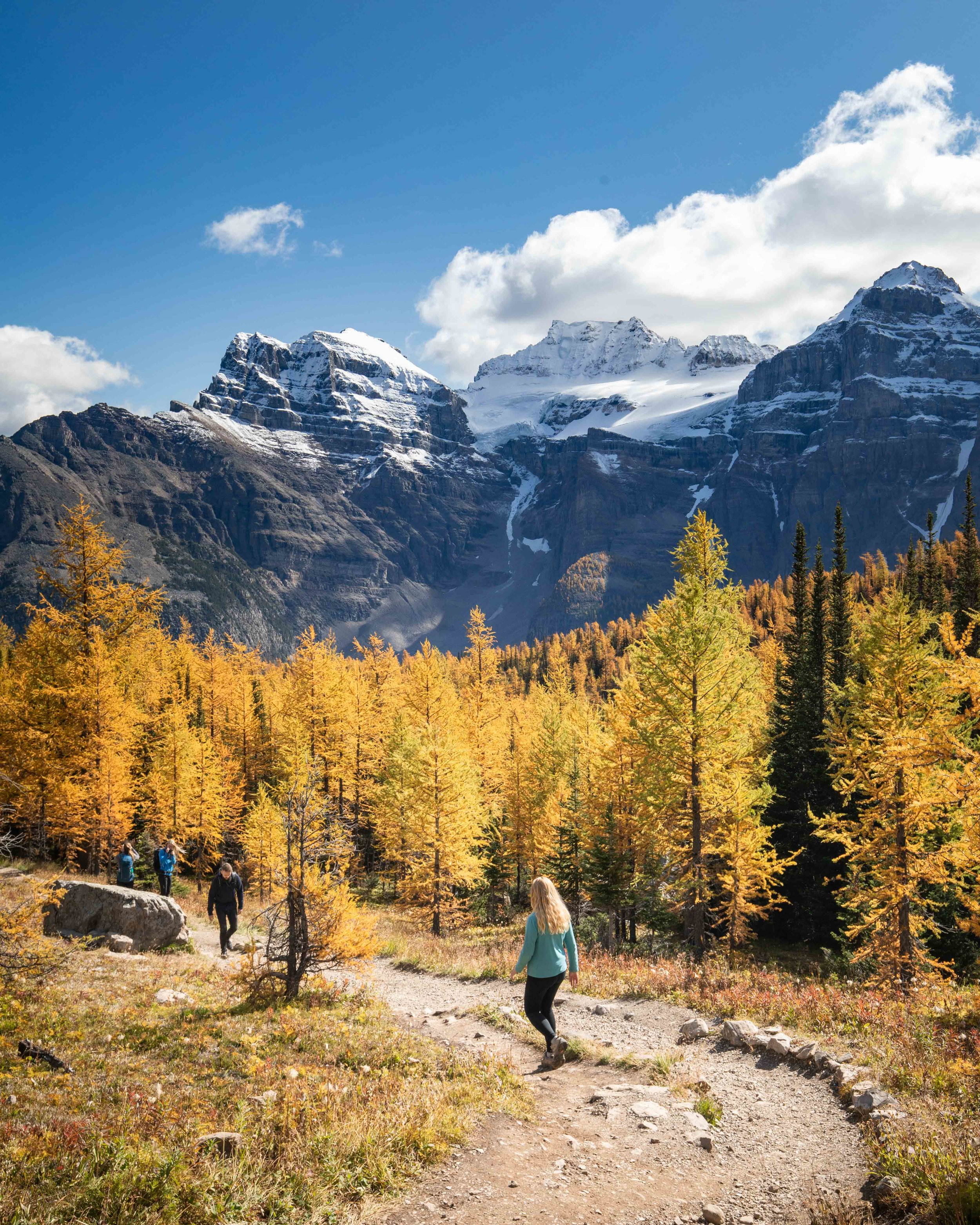 Larch valley hike - best things to do in Lake Louise