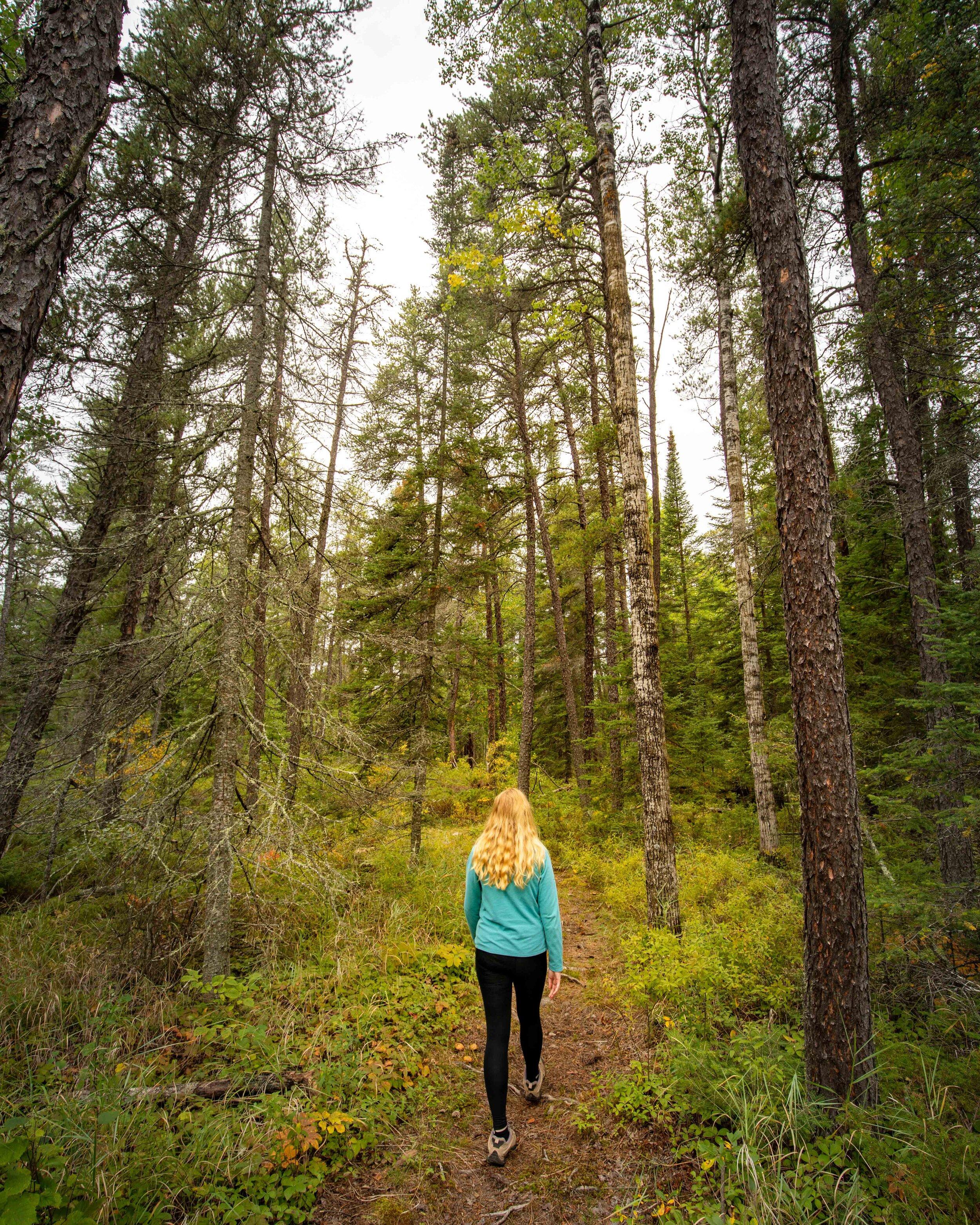 The Pine Ridge Trail at Falcon Trails Resort