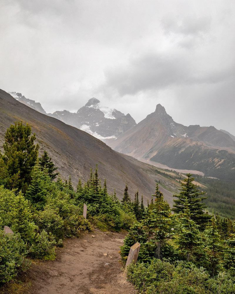 The start of the Park Ridge Trail