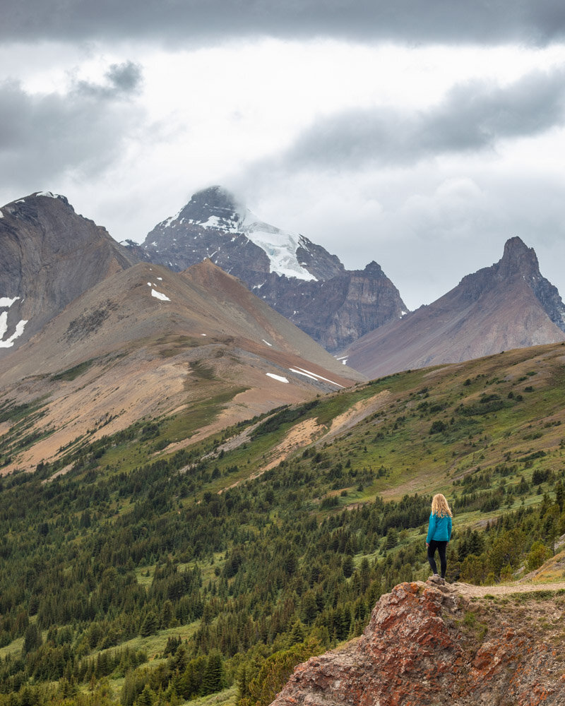 The mountains around the Parker Ridge Trail