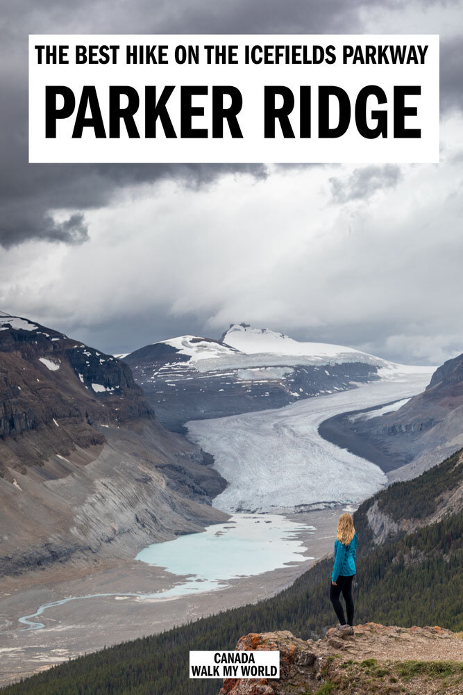 What to expect from the Parker Ridge Trail - the best hike on the Icefields Parkway! We'll tell you how to get there, what the trail is like, the stunning views from the top and why this is well worth making the effort to do. #Canada #Banff #Jasper #IcefieldsParkway