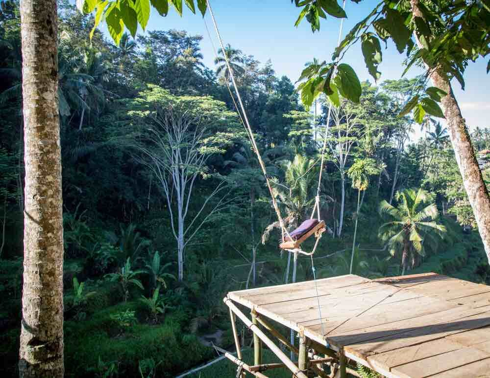 Tegalalang Rice Terrace, Ubud: The second swing (higher)