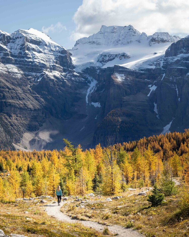 The spectacular Larch Valley