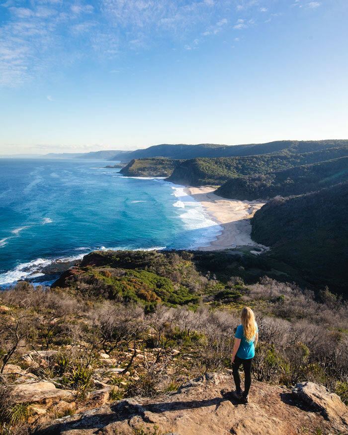 15 Incredible Royal National Park Walks The Best Of The Coast Bush And Rainforest Walk My World