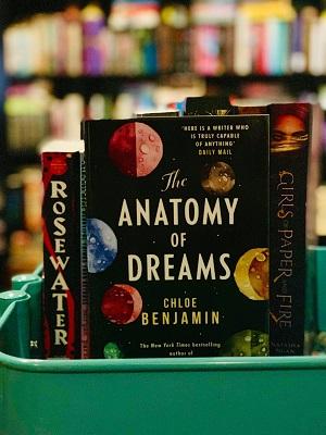 The Anatomy of Dreams on Bindro's Bookshelf