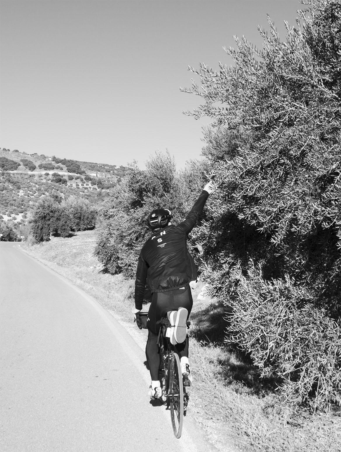 malaga-road-bike-rental-orange1.jpg