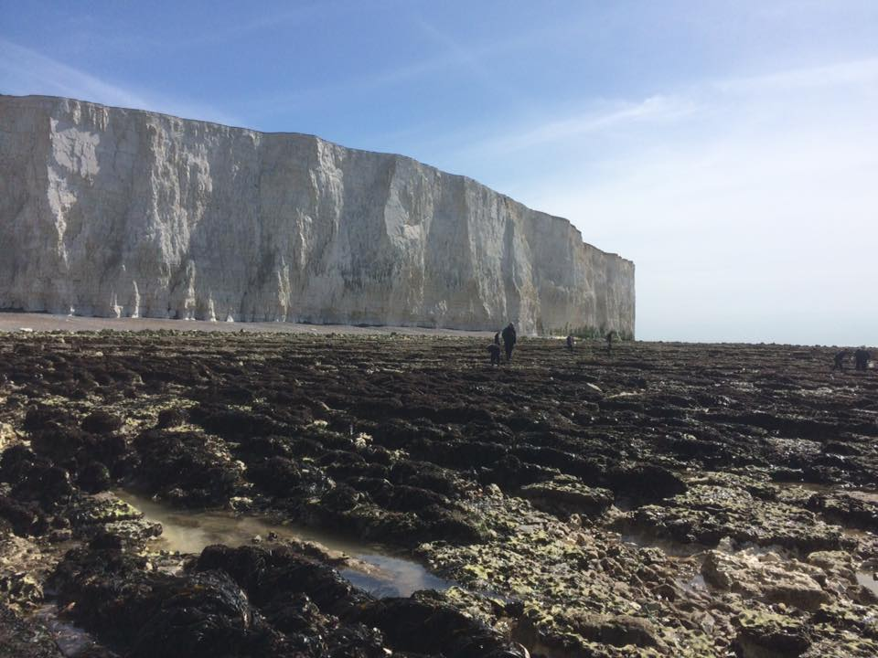 Field trip to Birling Gap