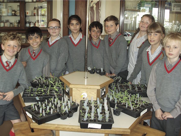 Rocket seeds - Sompting Abbotts Prep School has been involved in one of British astronaut Tim Peake's experiments! Two kilograms of rocket seeds were launched on Soyuz 44S on 02 September 2015 with a European Space Agency (ESA) astronaut, arriving on the International Space Station (ISS) two days later. British ESA astronaut Tim Peake took charge of the seeds while on the ISS for his Principia mission. After several months on board, the seeds were sent back to Earth. After they returned to the UK, they were packaged up with identical seeds that have stayed on Earth.Sompting Abbotts received two packets of 100 seeds to grow and compare and the results were entered into a national online database so that they can be compared across all schools in the UK.